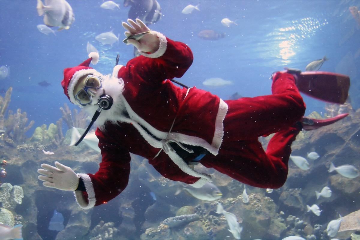 """In Camden, New Jersey,inside the <a href=""""https://www.adventureaquarium.com/What-To-Do-In-New-Jersey/Special-Events/Christmas-Underwater"""" target=""""_blank"""">Adventure Aquarium's</a> Ocean Realm tank, Santa opts to go underwater instead of flying. Every year, he goes for a dip in his red robe and hat. (Thankfully, he leaves his sack of toys outside of the water.) Kids can stop by Santa's tank to snap selfies, write letters, and check out the <a href=""""https://www.facebook.com/AdventureAquarium/photos/christmas-underwater-returns-from-now-until-december-30-enjoy-scuba-santa-appear/10157285830159131/"""" target=""""_blank"""">world's tallest underwater Christmas tree</a>."""