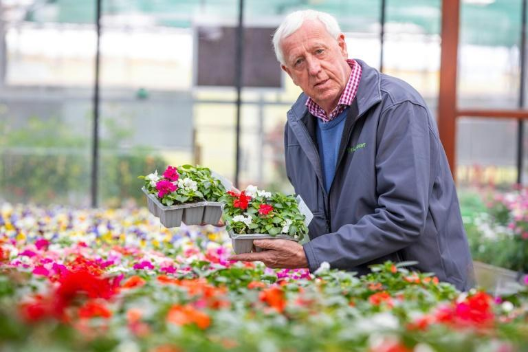 Seeds used to take four days to reach Robin Mercer's Belfast garden centre from England. Post-Brexit it is taking four weeks