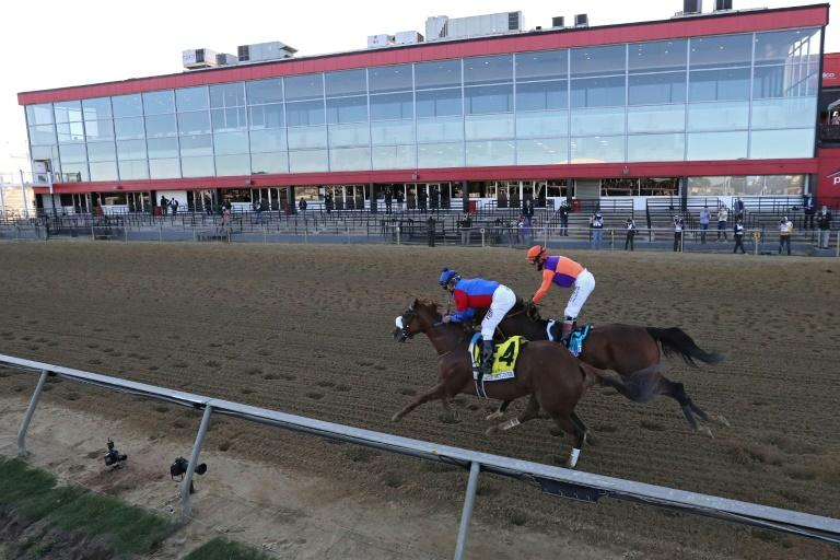 Swiss Skydiver edges Authentic in Preakness Stakes thriller