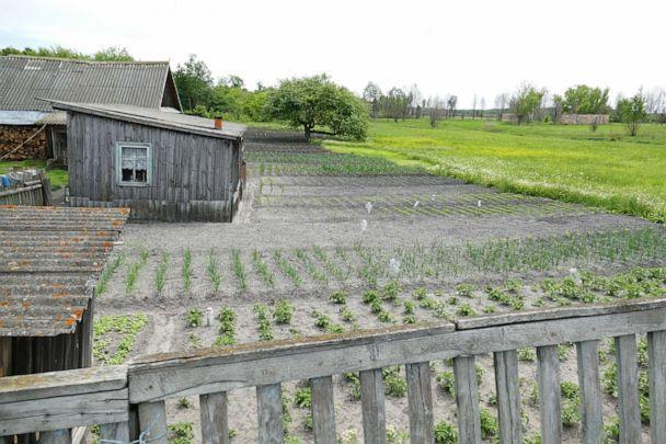 PHOTO: A vegetable garden by a house in the 'Zone 2' area of the 'Exclusion Zone' where people were ordered to leave following the disaster but that thousands of people now still live in. (Courtesy of the Chernobyl Spirit Company.)