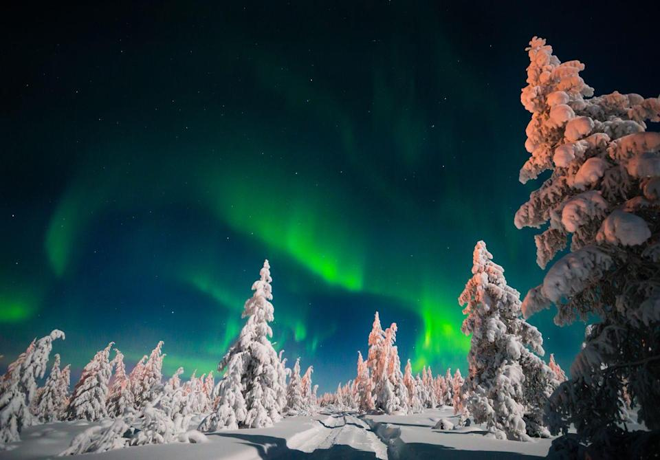 """<p><a class=""""link rapid-noclick-resp"""" href=""""https://prima.tripsmiths.com/tours/norway-northern-lights-cruise-carol-kirkwood"""" rel=""""nofollow noopener"""" target=""""_blank"""" data-ylk=""""slk:TAKE ME THERE"""">TAKE ME THERE</a></p>"""