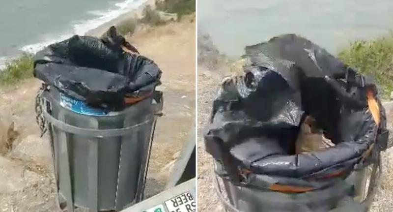 Brett Tait's main concern is the rubbish blowing into the ocean, due to the lack of lid on the bin. Source: Brett Tait/Facebook - Aussie Bin Fails