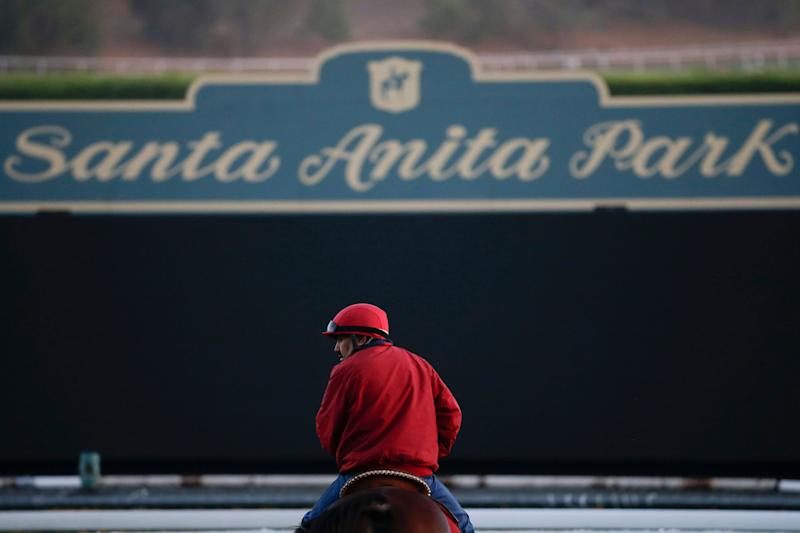 Two more horses died at the famed Santa Anita racetrack in Southern California last weekend, marking the 25th equine death at the track this season.