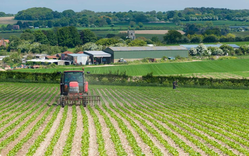 Farming - Loop Images/Universal Images Group via Getty Images
