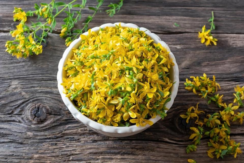 Fresh St. John's wort flowers in a bowl, top view