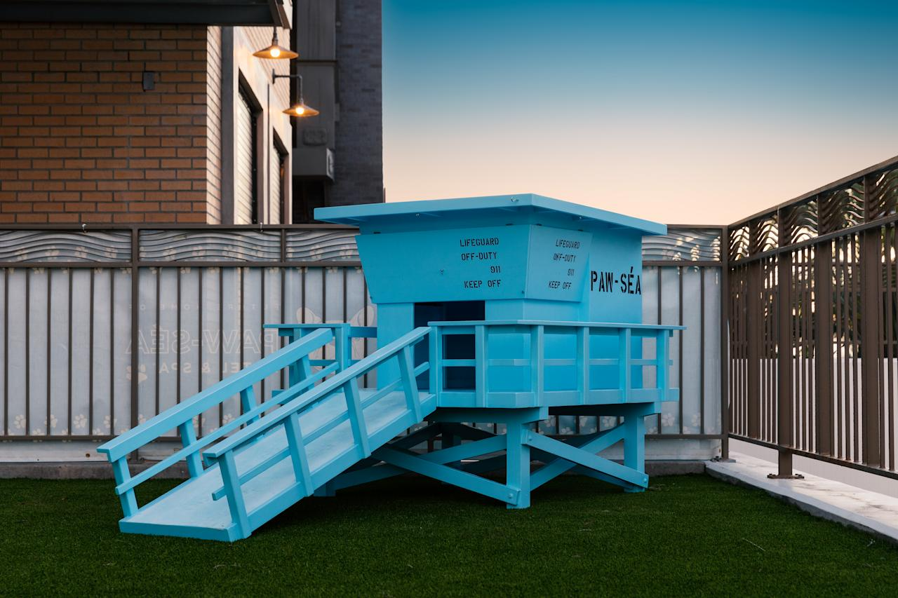 <p>And to top it off the hotel has just unveiled a new interactive pup play park, The PAW-SÉA. Photo: Supplied/Paséa Hotel & Spa </p>