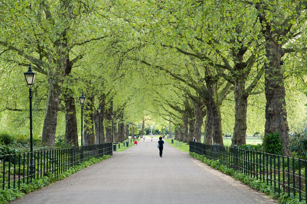 """<p>Known for its woodland areas and smooth terrain, it's no wonder this lush oasis is a magnet for London's runners. Its most popular route is the <a href=""""https://www.strava.com/segments/8414280"""" target=""""_blank"""">Battersea Short Corner</a>, with over 26,000 efforts clocked up in the last three months.</p>"""