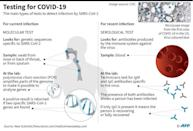 Graphic on the science behind the main methods of testing for the current corronavirus outbreak. (AFP Photo/John SAEKI)