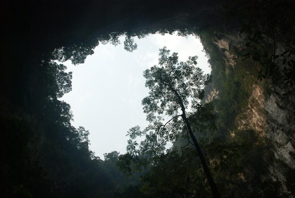 Scenic view in the biggest cave of the world, Hang Son Doong