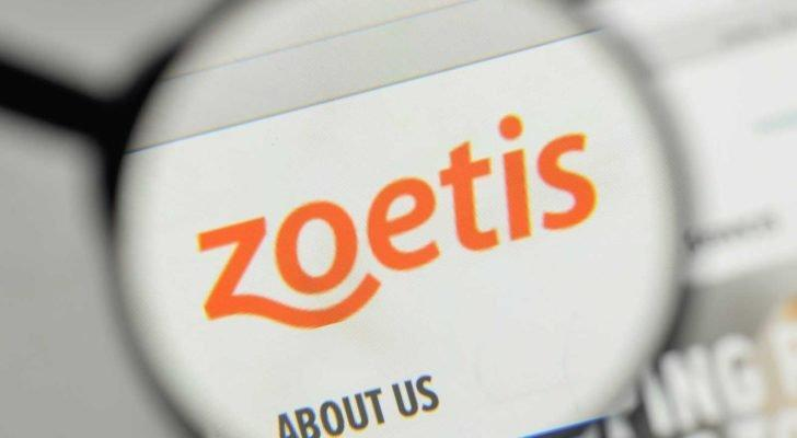 a magnifying glass enlarges the Zoetis logo on a website