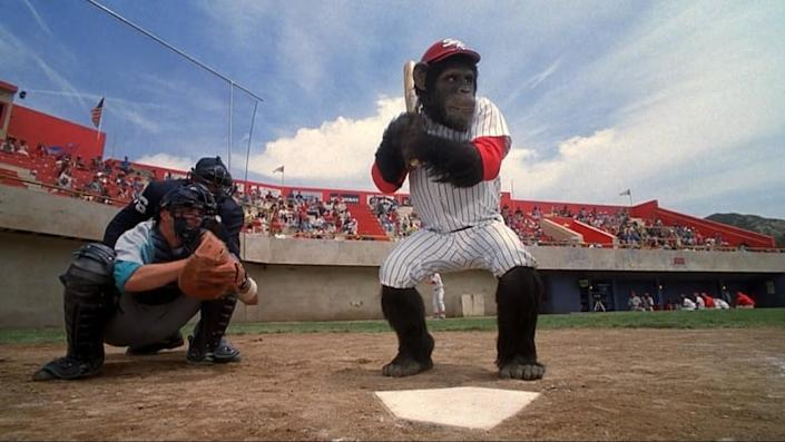 monkey at bat in ed