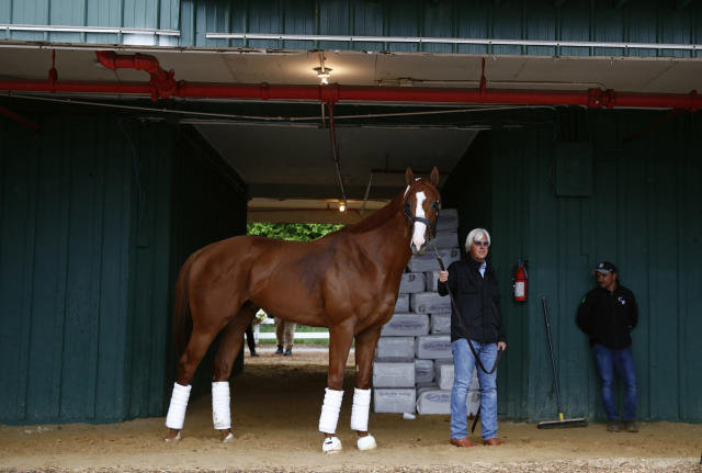 Trainer Bob Baffert walks Kentucky Derby winner Justify in a barn, Wednesday, May 16, 2018, after Justify's arrival at Pimlico Race Course in Baltimore. The Preakness Stakes horse race is scheduled to take place Saturday, May 19. (AP)