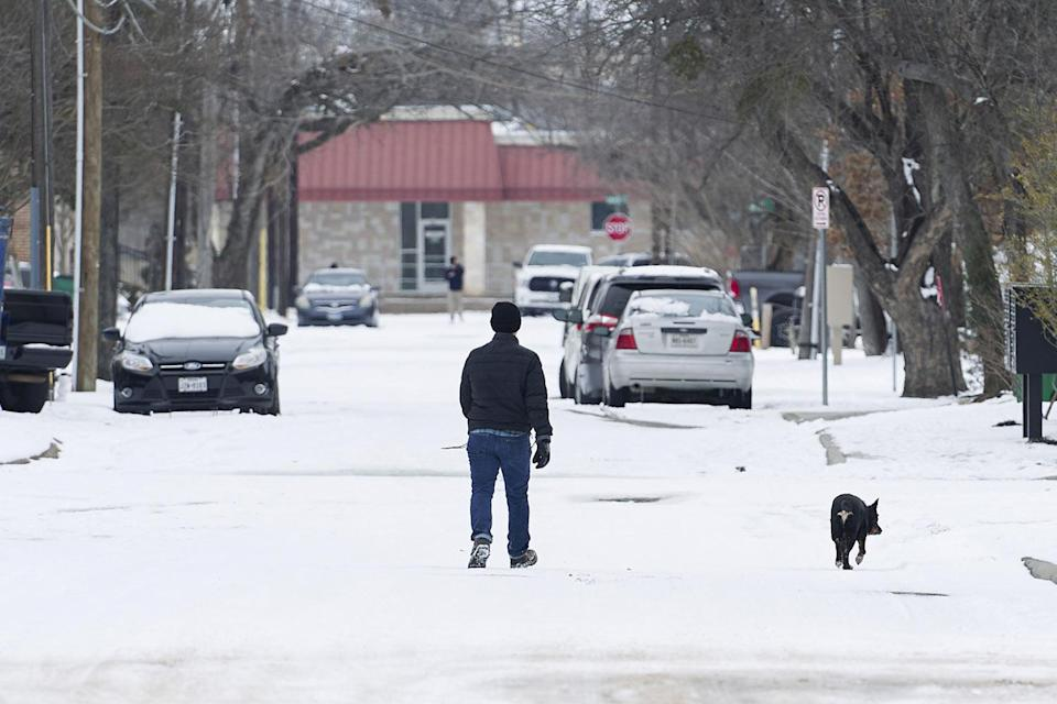 <p>A person walks their dog through the snow-covered streets in McKinney, Texas. </p>