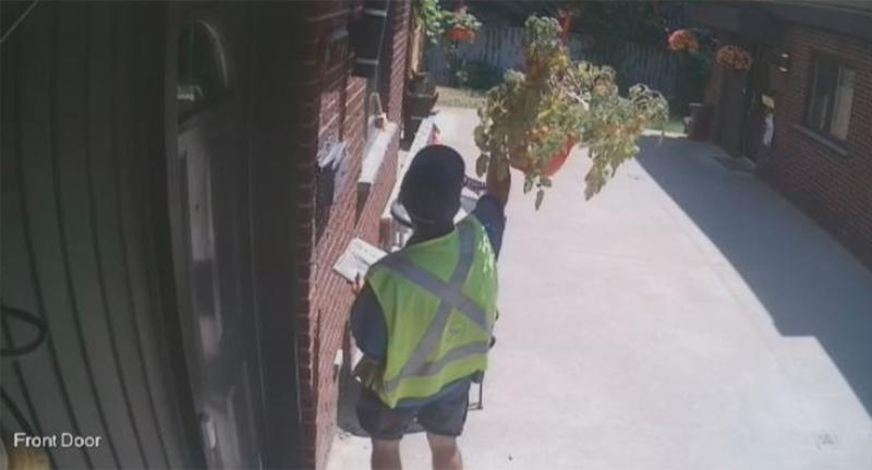 Canada Post Carrier Pilfers Tomatoes, Supervisor Apologizes