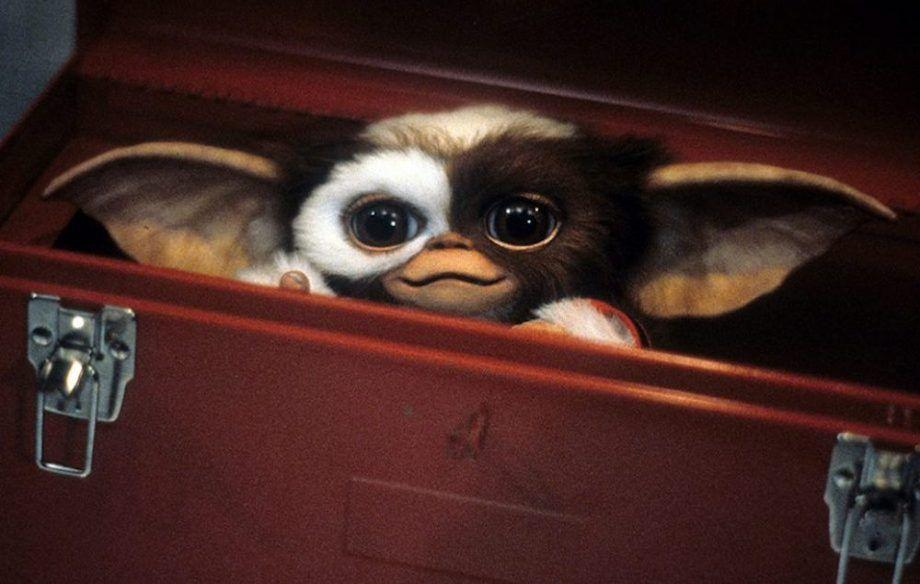 """<p>It's hard to believe that Gizmo, the cuddly Mogwai, could create something as terrifying as the nasty, brutish Gremlins, but he does, and they're pretty terrifying. Don't feed them after midnight! If it's too much, skip to<em> <a href=""""https://www.amazon.com/Gremlins-2-Batch-Howie-Mandel/dp/B00KQ9YNGW/?tag=syn-yahoo-20&ascsubtag=%5Bartid%7C10055.g.28038087%5Bsrc%7Cyahoo-us"""" rel=""""nofollow noopener"""" target=""""_blank"""" data-ylk=""""slk:Gremlins 2"""" class=""""link rapid-noclick-resp"""">Gremlins 2</a></em>, which is a lot zanier. <br></p><p><a class=""""link rapid-noclick-resp"""" href=""""https://www.amazon.com/gp/video/detail/B00KQ9UTSI/?tag=syn-yahoo-20&ascsubtag=%5Bartid%7C10055.g.28038087%5Bsrc%7Cyahoo-us"""" rel=""""nofollow noopener"""" target=""""_blank"""" data-ylk=""""slk:WATCH ON AMAZON"""">WATCH ON AMAZON</a> <a class=""""link rapid-noclick-resp"""" href=""""https://go.redirectingat.com?id=74968X1596630&url=https%3A%2F%2Fitunes.apple.com%2Fus%2Fmovie%2Fgremlins%2Fid601284107&sref=https%3A%2F%2Fwww.goodhousekeeping.com%2Flife%2Fentertainment%2Fg28038087%2Fbest-scary-movies-for-kids%2F"""" rel=""""nofollow noopener"""" target=""""_blank"""" data-ylk=""""slk:WATCH ON ITUNES"""">WATCH ON ITUNES</a></p>"""