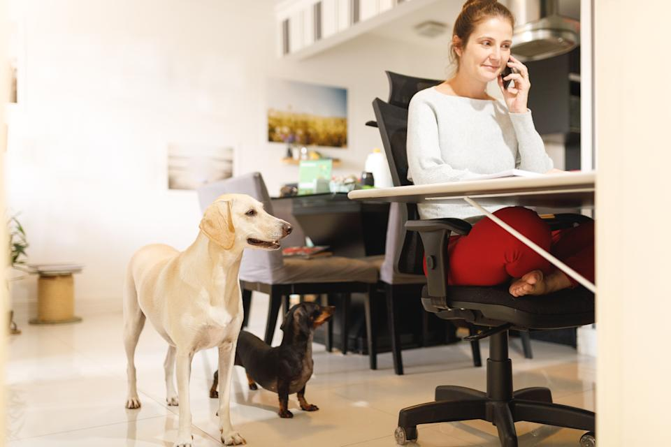 Working from home might mean sharing your workspace with pets, roommates, family members, and children. (Photo: Getty)