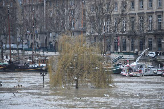 """<img alt=""""""""/><p>In Paris, the Seine is flooding.</p> <p>After heavy rains, the river's water level hit around 16 feet on Tuesday, a city official told <a rel=""""nofollow"""" href=""""https://www.washingtonpost.com/news/worldviews/wp/2018/01/23/flood-of-the-century-fears-rise-in-paris-along-with-the-seine/?utm_term=.8d559492342d""""><em>The Washington Post</em></a>. It could reach 19.5 feet by the end of the week. On a normal day, it's about 6.5 feet. River cruises and the commuter rail line that runs along the Seine have been shut down. It's the worst flooding since 2016, when rising waters forced the Louvre to shut down as museum workers crated works of art and moved them upstairs.</p> <p>The flood emergency level is currently at """"orange,"""" the highest warning below """"red."""" It's not quite the worst flooding Paris has even seen. Back in 1910, the Seine rose to 28 feet, submerging the City of Lights for two months.</p> <p><img title=""""The Seine has turned into a powerful muddy torrent that has submerged parks and footpaths alongside its channel that runs through the French capital, while river boats are no longer able to pass under the city's bridges."""" alt=""""The Seine has turned into a powerful muddy torrent that has submerged parks and footpaths alongside its channel that runs through the French capital, while river boats are no longer able to pass under the city's bridges.""""></p> <p>The Seine has turned into a powerful muddy torrent that has submerged parks and footpaths alongside its channel that runs through the French capital, while river boats are no longer able to pass under the city's bridges.</p><div><p>Image:  LUDOVIC MARIN/AFP/Getty Images</p></div><p><img title=""""A man holds his shoes in his hands as he walks through the Seine after it burst its banks in Paris."""" alt=""""A man holds his shoes in his hands as he walks through the Seine after it burst its banks in Paris.""""></p> <p>A man holds his shoes in his hands as he walks through the Seine after it burst its banks in Paris."""