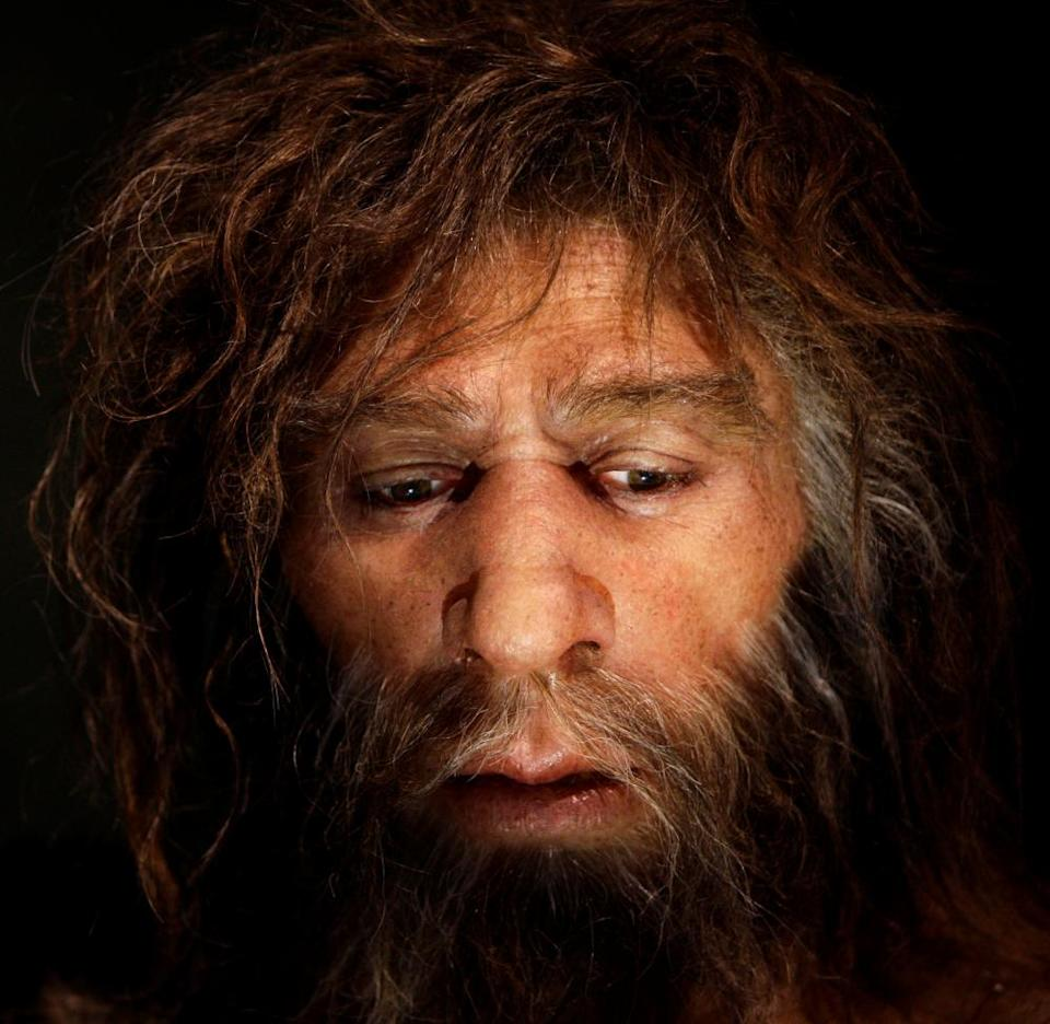 Hyperrealistic face of a Neanderthal male
