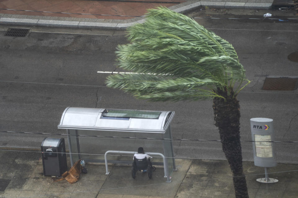 A man in a wheelchair takes refuge under a bus stop shelter as a nearby tree bows against the wind.