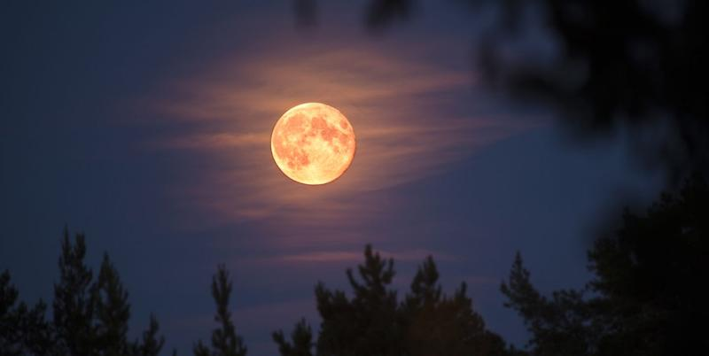 A Super Pink Moon Is Coming in April