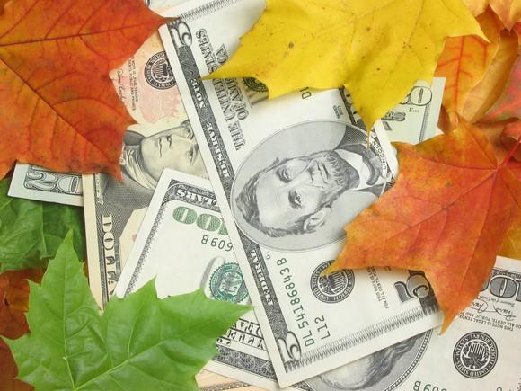 Paper currency spread out among fallen leaves
