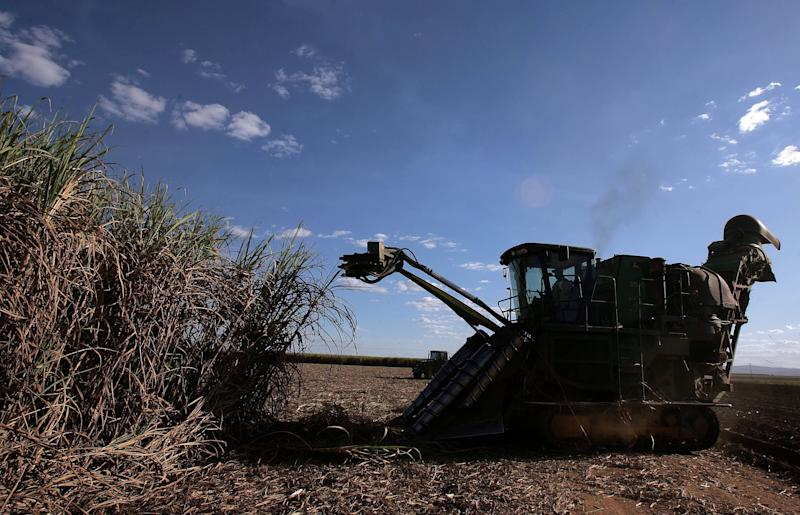 The Pandemic Is Dragging Brazilian Farmers Into the Digital Age