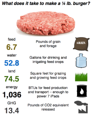 Infographic: What does it take to make a quarter-pound burger