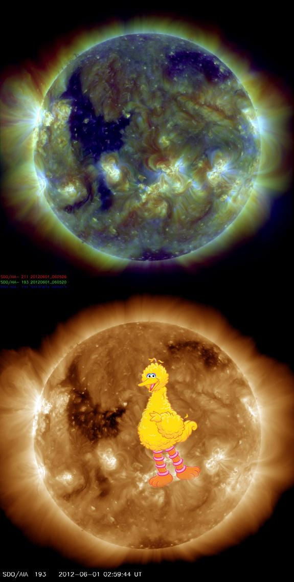 'Big Bird' on the Sun Spotted in Spacecraft Photo