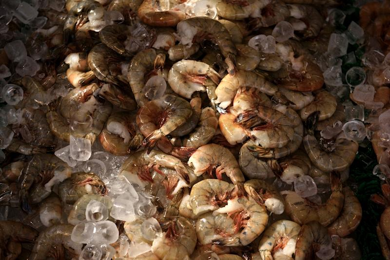 A new study shows that a low-oxygen water problem called hypoxia is related to the climbing price of seafood, such as big-sized shrimp