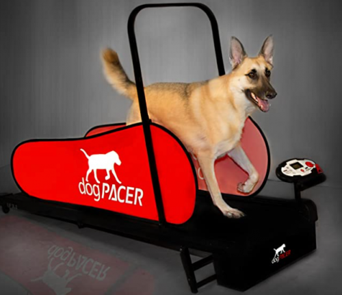dogPacer Full Size Treadmill