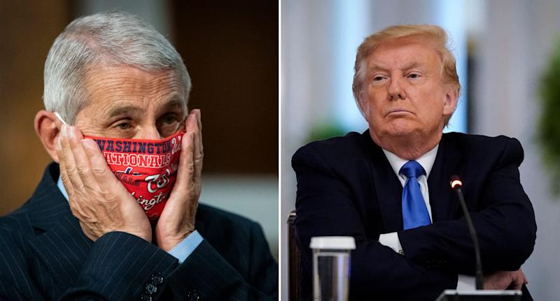 Dr Anthony Fauci is pictured wearing a red face mask (left) and Donald Trump (right) is pictured with his arms crossed. Source: Getty