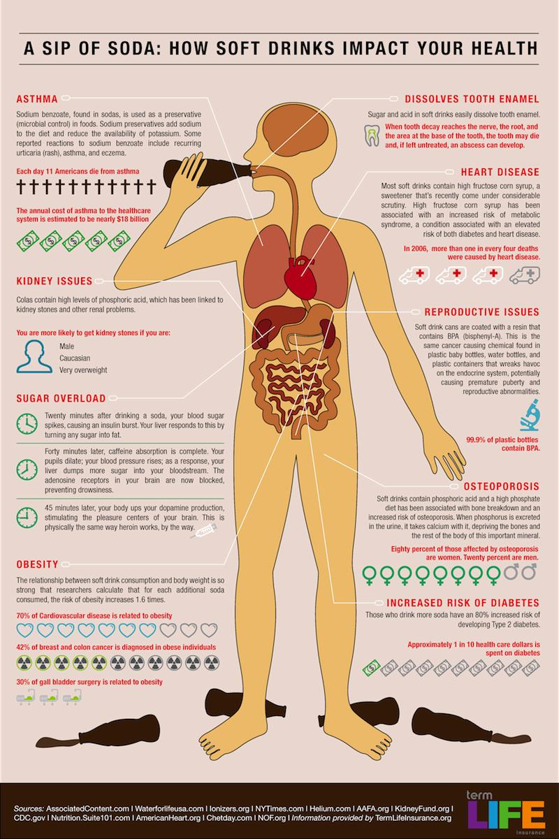 "A Sip of Soda: How Soft Drinks Impact Your Health Infographic"" width="