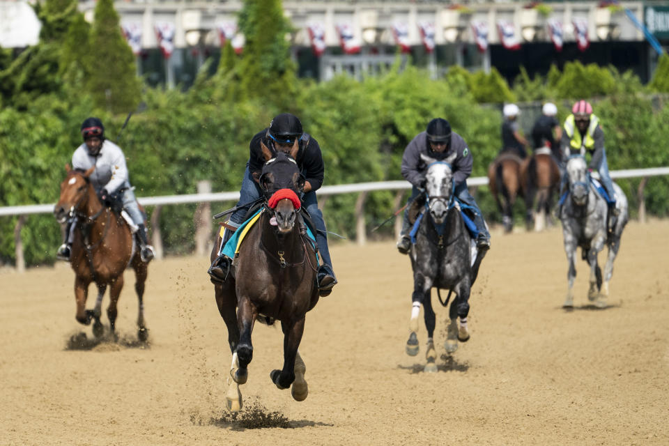 Belmont Stakes entrant Hot Rod Charlie, front, takes a training run on the main track ahead of the 153rd running of the Belmont Stakes horse race, Wednesday, June 2, 2021, at Belmont Park in Elmont, N.Y. (AP Photo/John Minchillo)