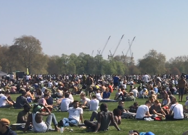 Large crowds gathered in the park (Jacob Jarvis)