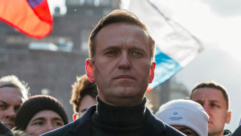 Macron urges Putin to shed light on 'attempted murder' of opponent Navalny
