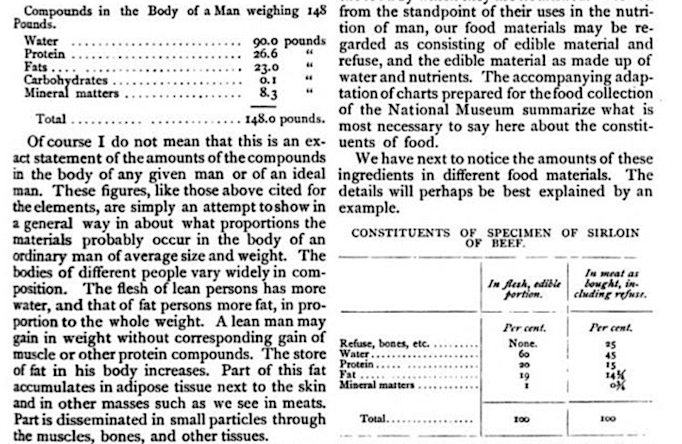 Photo of an article page showing composite analysis of an average man and an average sirloin of beef