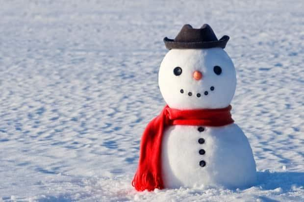 Islanders might see a few snowmen popping up on Tuesday. (Smit/Shutterstock - image credit)