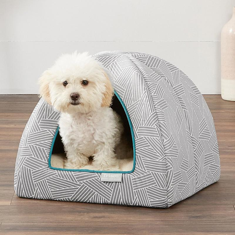 Frisco Dog & Cat Igloo Bed Cave. (Photo: Chewy)