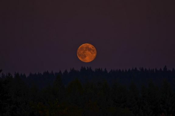 The blue moon over Evergreen Valley in Olympia, Wash., was photographed Aug. 31, 2012 by Mary P. Bowman.