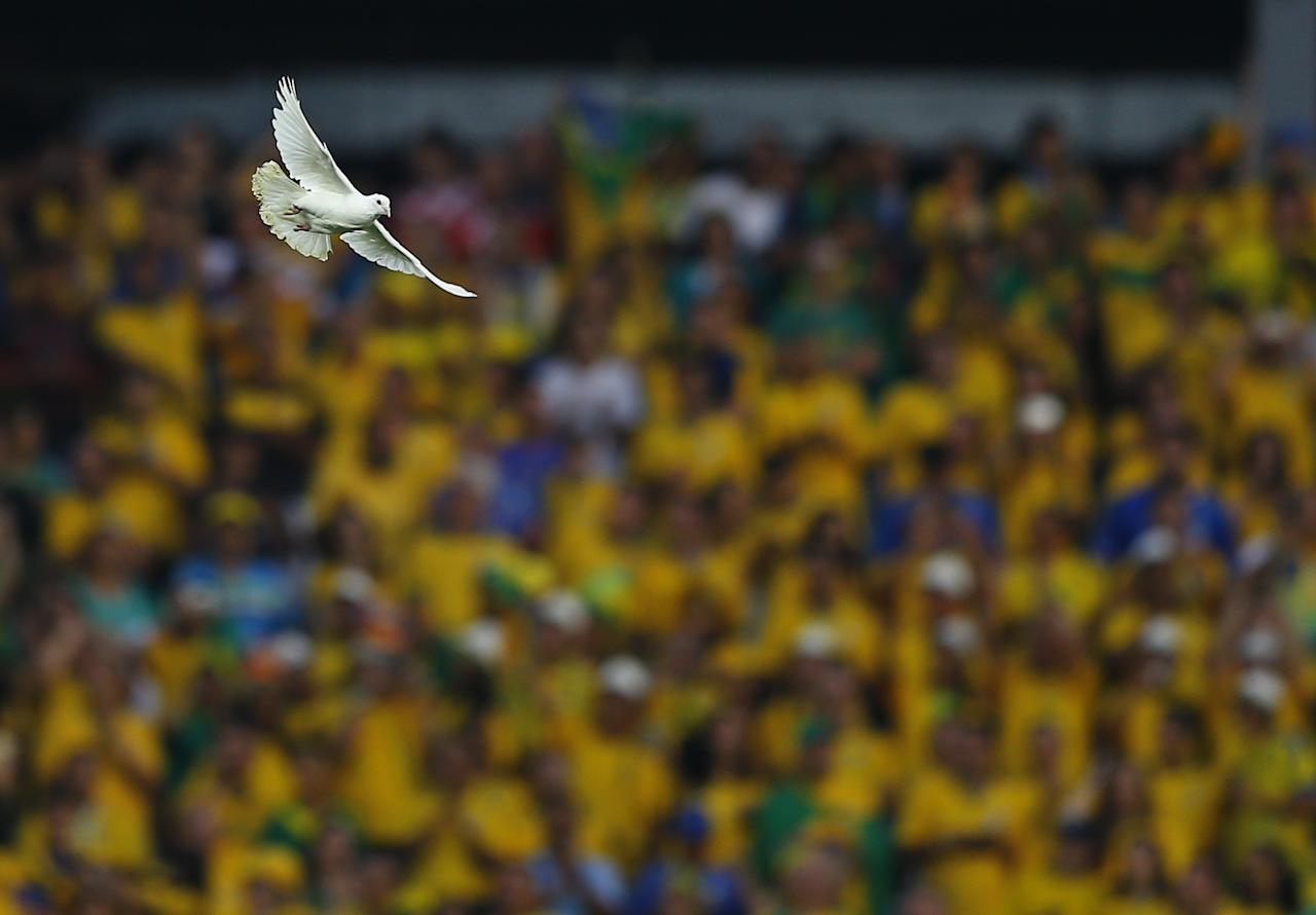 A dove flies after being released before the start of the 2014 World Cup opening match between Brazil and Croatia at the Corinthians arena in Sao Paulo June 12, 2014. REUTERS/Ivan Alvarado (BRAZIL - Tags: ANIMALS SPORT SOCCER WORLD CUP TPX IMAGES OF THE DAY)