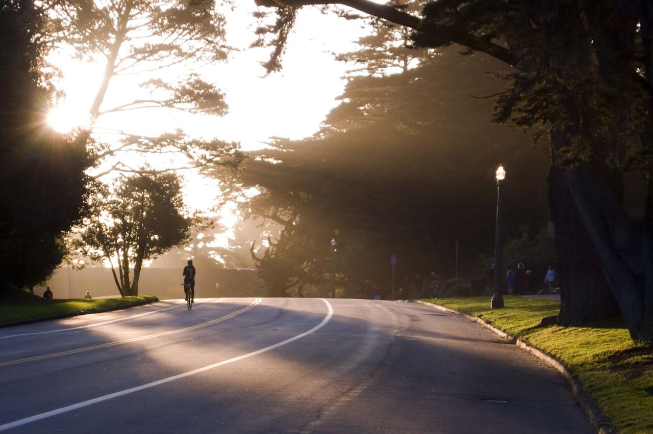 """<p><strong>Location:</strong> San Francisco</p><p><strong>Why you should ride it:</strong> This verdant, sprawling park through the heart of San Francisco features a paved bike trail that passes by popular cultural highlights, including the de Young Museum, the Conservatory of Flowers, and the Japanese Tea Garden. One tip? Ride on Sundays, when the main entrance is closed to cars. </p><p>There's also a hidden gem right in the middle of the park: the historic Polo Field Cycle Track, reserved every day of the week just for bikes. It's the perfect spot to practice <a href=""""https://www.bicycling.com/training/a20043963/the-visual-guide-to-mastering-pacelines/"""" target=""""_blank"""">pace lines</a>, sprint lead outs, and race efforts, says pro racer Jennifer Tetrick. """"I also use it for easy spin days and interval days."""" </p><p>At the southern end the park, cyclists can continue pedaling on the Great Highway Bike Path for unsullied views of Ocean Beach, plus access to the San Francisco Zoo.</p>"""