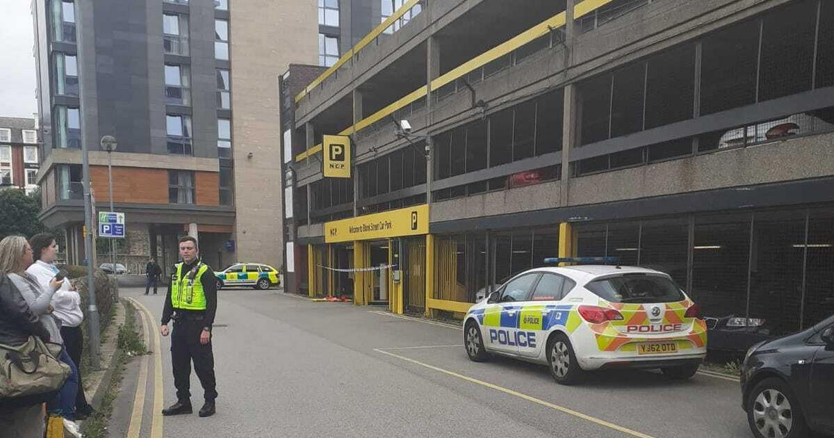 The boy died after falling from a window at the Sheffield Metropolitan Hotel on Blonk Street.