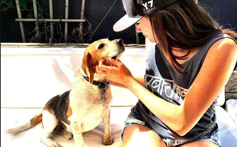 "While living in Toronto,&nbsp;<a href=""https://www.huffingtonpost.ca/entry/meghan-markle-dog_ca_5cd54651e4b07bc729767973"" target=""_blank"" rel=""noopener noreferrer"">Markle adopted her dog</a>, a beagle named Guy, from a rescue in Milton, Ont. Guy also had a ""brother,"" Bogart, who Markle had to leave behind when she moved to London because he was too old to travel. However, Guy was by Markle's side when she moved in with Harry in Nottingham Cottage. Meghan was photographed this week walking her two dogs, and although we can't be sure, one of them looks like Guy."