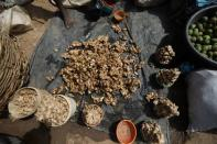 Freshly washed ginger plant bulbs are seen at a market in Kaduna