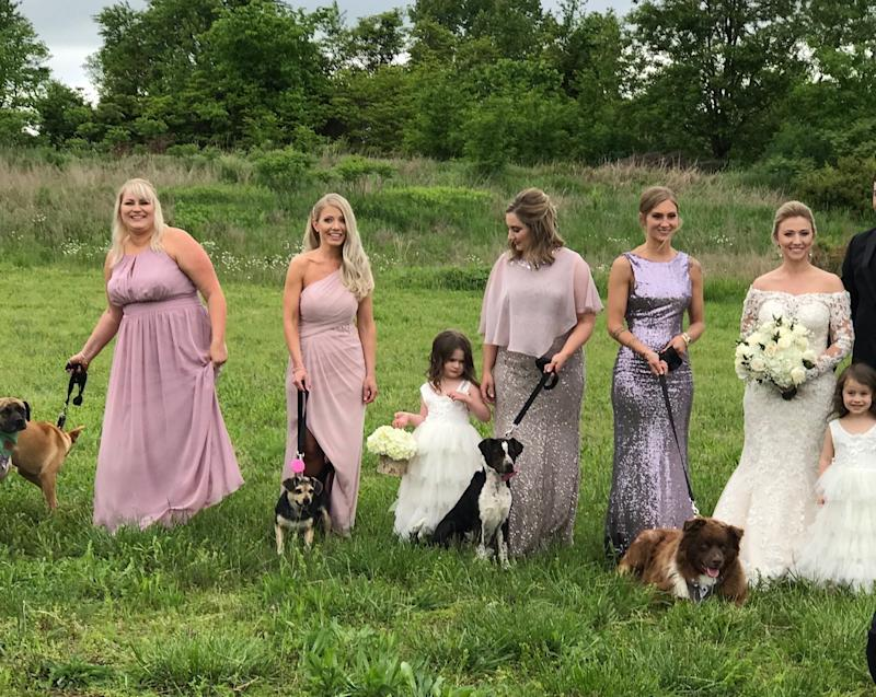 Bride Has Her Bridesmaids Carry Adoptable Shelter Dogs Down the Aisle Instead of Bouquets