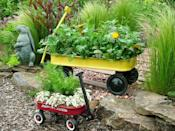"""<div class=""""caption-credit"""">Photo by: Nancy Ondra</div><div class=""""caption-title"""">Portable Gardens</div>When your kids have outgrown their play wagons, turn those toys into marvelous mobile containers. Regular-sized wagons can hold a wide variety of plants, so you can grow a whole garden in a single wagon. Wagons are also great for growing lettuces and other greens."""