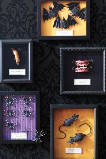 """<p>Transform shadowbox frames into chilling displays by adding whatever Halloween toys you can find, like teeth, fingers, or spiders.</p><p><strong><em><a href=""""https://www.womansday.com/home/crafts-projects/how-to/a5972/craft-project-creepy-specimen-boxes-123857/"""" rel=""""nofollow noopener"""" target=""""_blank"""" data-ylk=""""slk:Get the Creepy Specimen Boxes tutorial"""" class=""""link rapid-noclick-resp"""">Get the Creepy Specimen Boxes tutorial</a>.</em></strong></p><p><a class=""""link rapid-noclick-resp"""" href=""""https://www.amazon.com/Super-Sturdy-Hardwood-Displays-Shadowbox-Seashells/dp/B0831Q1JRH?tag=syn-yahoo-20&ascsubtag=%5Bartid%7C10070.g.1908%5Bsrc%7Cyahoo-us"""" rel=""""nofollow noopener"""" target=""""_blank"""" data-ylk=""""slk:SHOP SHADOWBOX FRAMES"""">SHOP SHADOWBOX FRAMES</a></p>"""