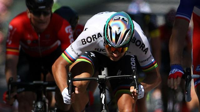 The UCI and Peter Sagan have settled a dispute over the Slovakian's disqualification from the 2017 Tour de France.
