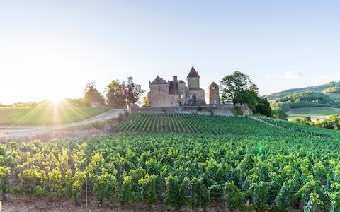 <span>Burgundy is known for its wine, but there are plenty other reasons to visit this historic region</span> <span>Credit: JOHN HARPER </span>