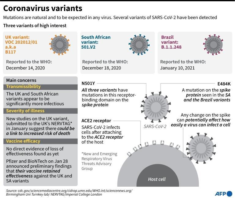 One thing is certain: the SARS-CoV-2 virus will continue to mutate, and as long as case figures remain high globally, the chances of significant mutations will also increase